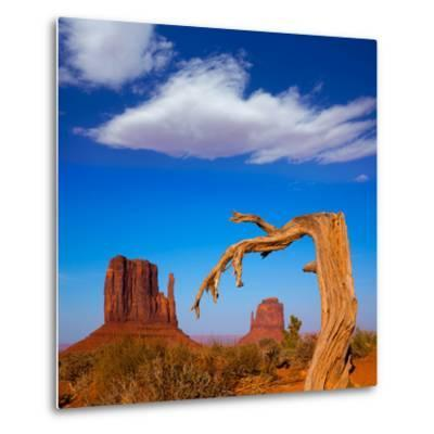 Monument Valley West and East Mittens Butte Utah-Lunamarina-Metal Print