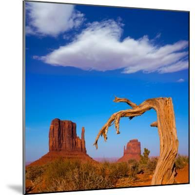 Monument Valley West and East Mittens Butte Utah-Lunamarina-Mounted Photographic Print
