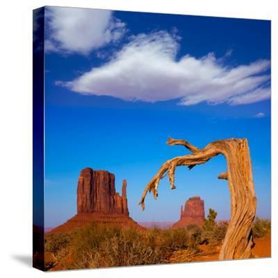 Monument Valley West and East Mittens Butte Utah-Lunamarina-Stretched Canvas Print