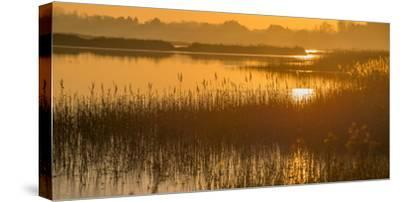 Dawn on the River Alde-Martin Wilcox-Stretched Canvas Print