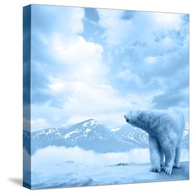 Figure of a Polar Bear on High Mountain Landscape-Oleksii Sergieiev-Stretched Canvas Print