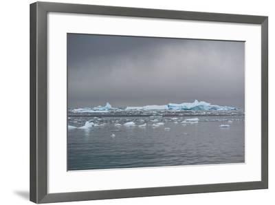 Icebergs Neko Harbour, Antarctica-Albert Knapp-Framed Photographic Print
