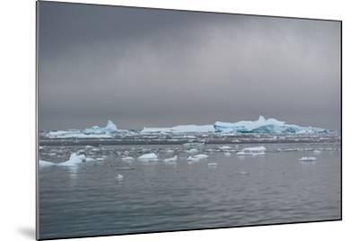 Icebergs Neko Harbour, Antarctica-Albert Knapp-Mounted Photographic Print