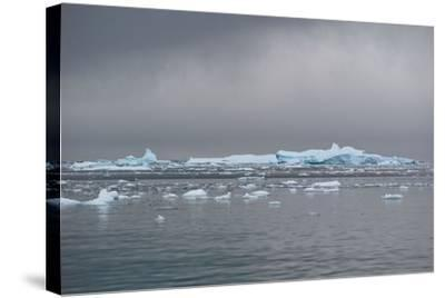 Icebergs Neko Harbour, Antarctica-Albert Knapp-Stretched Canvas Print