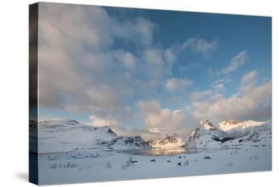 Coastal Landscape on Flakstadoya, Loftofen, Norway-moodboard-Stretched Canvas Print