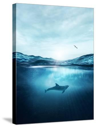 Dolphin Underwater- Blue-Stretched Canvas Print