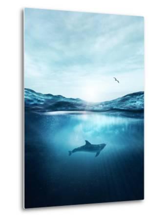 Dolphin Underwater- Blue-Metal Print