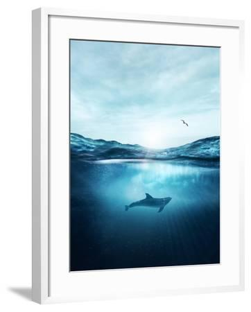 Dolphin Underwater- Blue-Framed Photographic Print
