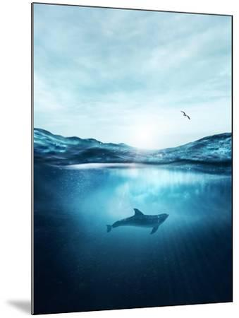 Dolphin Underwater- Blue-Mounted Photographic Print