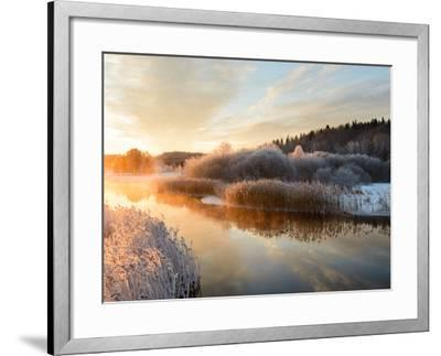 River and Trees in Winter, Storån, Åtvidaberg, Östergötland, Sweden-Utterstr?m Photography-Framed Photographic Print