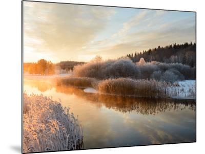 River and Trees in Winter, Storån, Åtvidaberg, Östergötland, Sweden-Utterstr?m Photography-Mounted Photographic Print