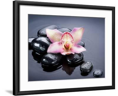 Spa Zen Stones-Subbotina Anna-Framed Photographic Print