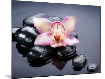 Spa Zen Stones-Subbotina Anna-Mounted Photographic Print