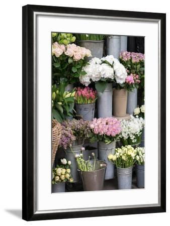 Spring Flowers Including Lilacs, Hydrangea, Ranunculus and Roses-Georgianna Lane-Framed Photographic Print