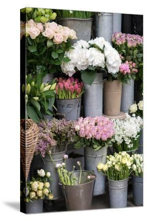Spring Flowers Including Lilacs, Hydrangea, Ranunculus and Roses-Georgianna Lane-Stretched Canvas Print