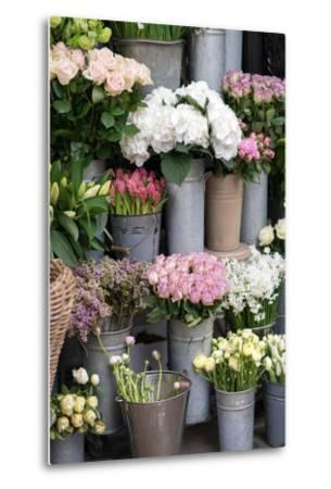 Spring Flowers Including Lilacs, Hydrangea, Ranunculus and Roses-Georgianna Lane-Metal Print