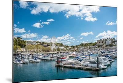View over the Harbor and Marina of Torquay, Torbay, England, UK- Travelbild-Mounted Photographic Print