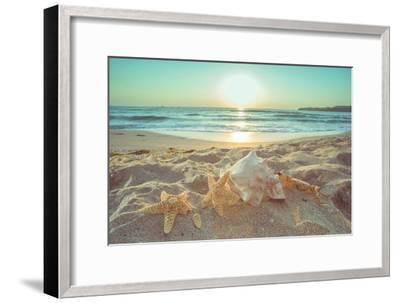 Starfish and Shells on the Beach at Sunrise-Deyan Georgiev-Framed Photographic Print
