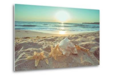 Starfish and Shells on the Beach at Sunrise-Deyan Georgiev-Metal Print