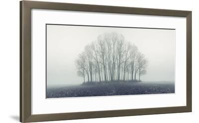 Small Forest in Autumn Foggy Morning-Konrad B?k-Framed Photographic Print