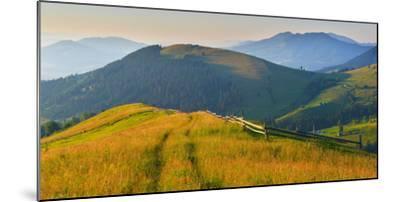 Summer Highland-Denis Lazarenko-Mounted Photographic Print