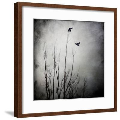 Two Bird Flying Near a Tree-Trigger Image-Framed Photographic Print