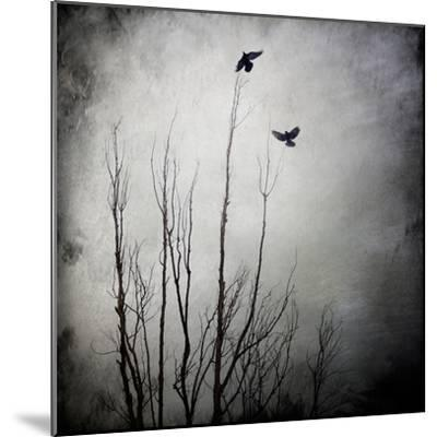 Two Bird Flying Near a Tree-Trigger Image-Mounted Photographic Print