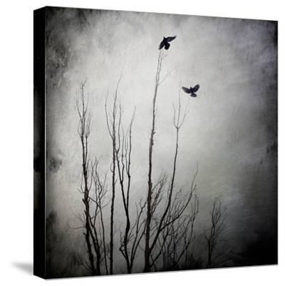 Two Bird Flying Near a Tree-Trigger Image-Stretched Canvas Print