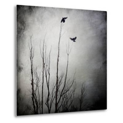 Two Bird Flying Near a Tree-Trigger Image-Metal Print