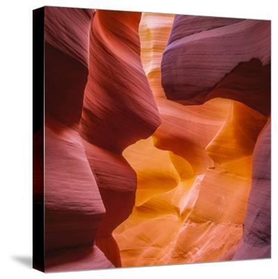 Warm Light Glowing on the Sandstone Walls of Lower Antelope Canyon Near Page, Arizona-John Lambing-Stretched Canvas Print