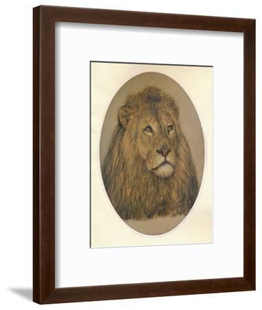 Lions Head, c1896-Frank Paton-Framed Giclee Print