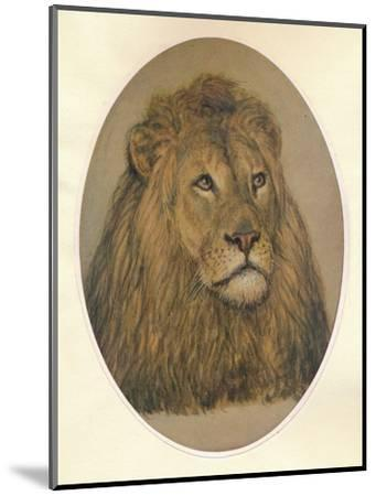 Lions Head, c1896-Frank Paton-Mounted Giclee Print