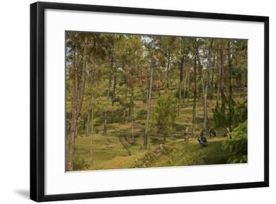 A Goat Herder with Goat in an Uttarakhand Village with Leopard Conflict Problems-Steve Winter-Framed Photographic Print
