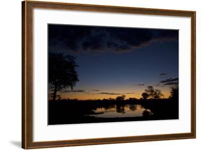 Habitat in South Africa's Timbavati Game Reserve-Steve Winter-Framed Photographic Print