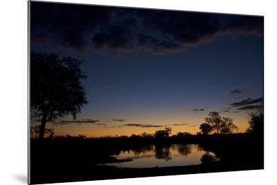 Habitat in South Africa's Timbavati Game Reserve-Steve Winter-Mounted Photographic Print