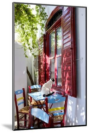 Cat Sitting on the Table Looking Inside a Cafe Window-Krista Rossow-Mounted Photographic Print