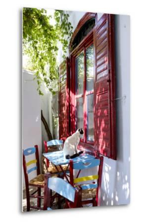 Cat Sitting on the Table Looking Inside a Cafe Window-Krista Rossow-Metal Print