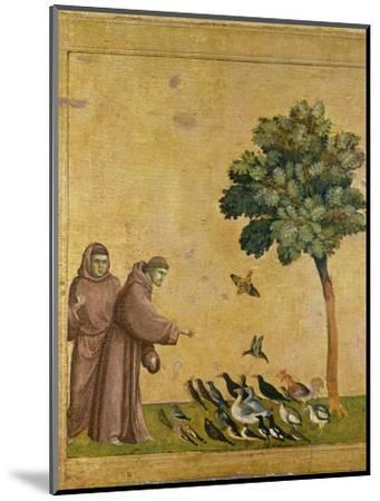 St. Francis of Assisi preaching to the birds. Ca. 1295-1300 (Predella, see also Image ID 19398)--Mounted Giclee Print
