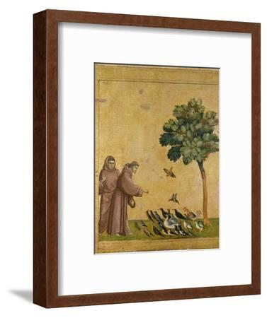 St. Francis of Assisi preaching to the birds. Ca. 1295-1300 (Predella, see also Image ID 19398)--Framed Giclee Print