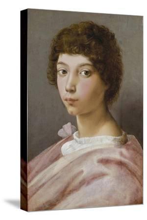 Bildnis des Alessandro Medici-Raffael Raffaello Sanzio-Stretched Canvas Print