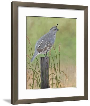 Mrs. Quail-Julie Peterson-Framed Art Print