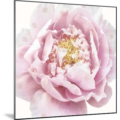 Whisper Floral-Bella Dos Santos-Mounted Art Print