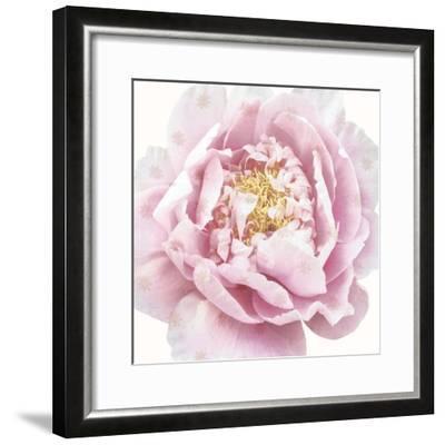 Whisper Floral-Bella Dos Santos-Framed Art Print