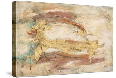 Land, Water, Sky-Gabriela Villarreal-Stretched Canvas Print