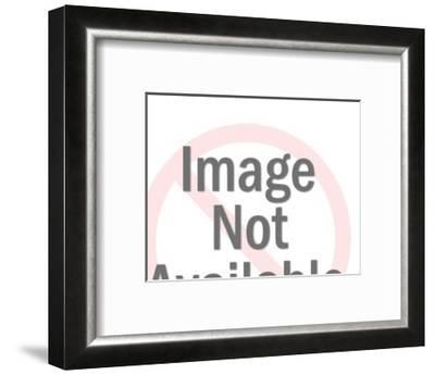 R-Pop Ink - CSA Images-Framed Art Print