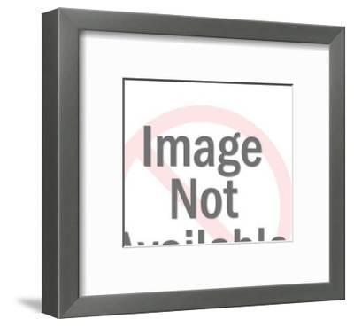 Stylist-Pop Ink - CSA Images-Framed Art Print