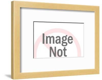 Pop-Pop Ink - CSA Images-Framed Art Print