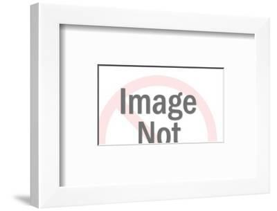 Home-Pop Ink - CSA Images-Framed Art Print