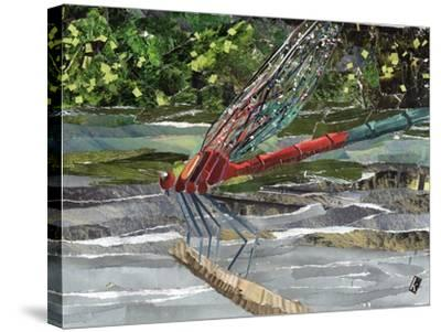 Red Dragonfly-Kirstie Adamson-Stretched Canvas Print