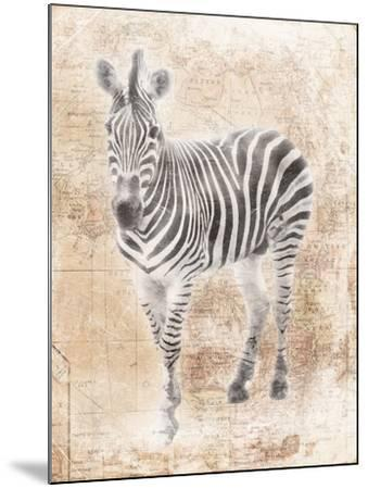 African Zebra-Jace Grey-Mounted Art Print